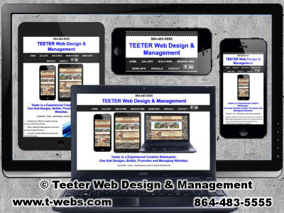 Teeter Website design